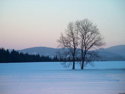Erinnerung an den Winter