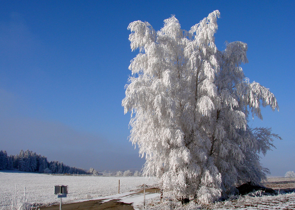 Erinnerungen an den Winter Teil 1