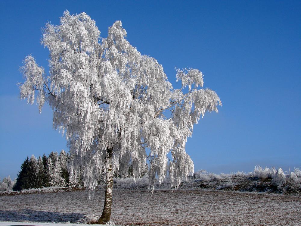 Erinnerungen an den Winter Teil 2