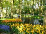 Erinnerungen an einen wunderschönen Frühling ......