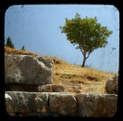 Erinnerungen an Ephesus