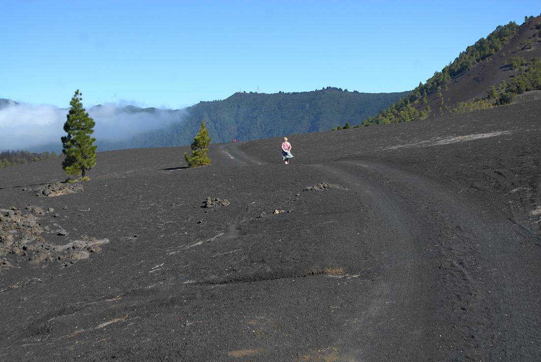 Erinnerungen an La Palma VII (Vor einem Jahr, erste Foto 12.2.- 6.4.2013)