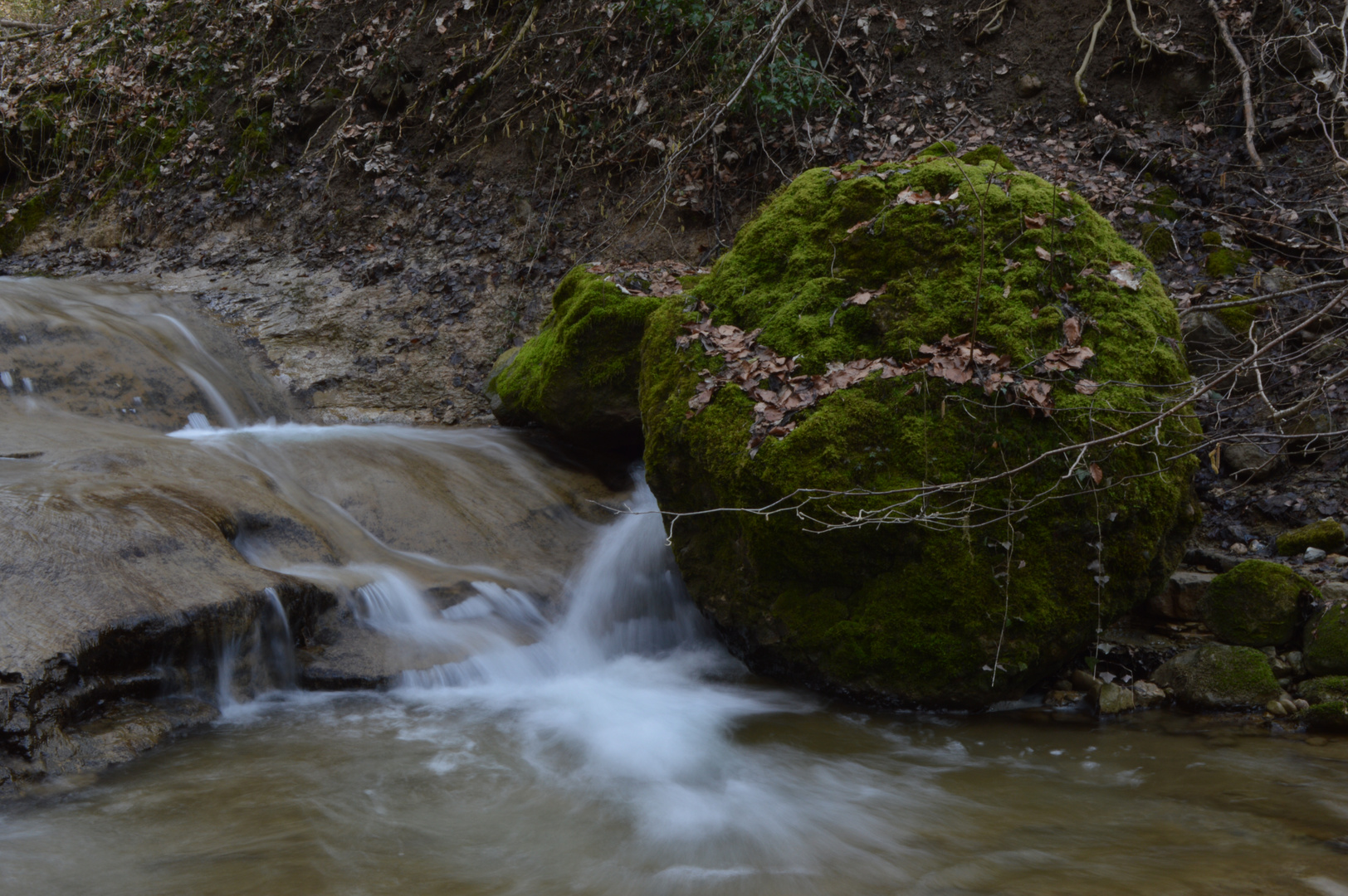 Erlenbacher Tobel 2