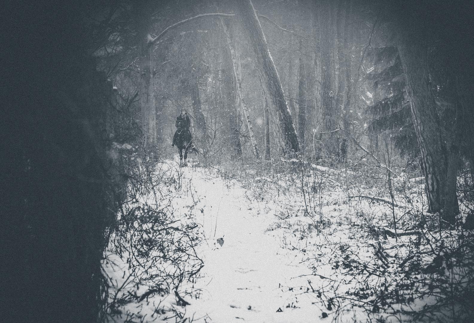 Erlkönig im Schnee