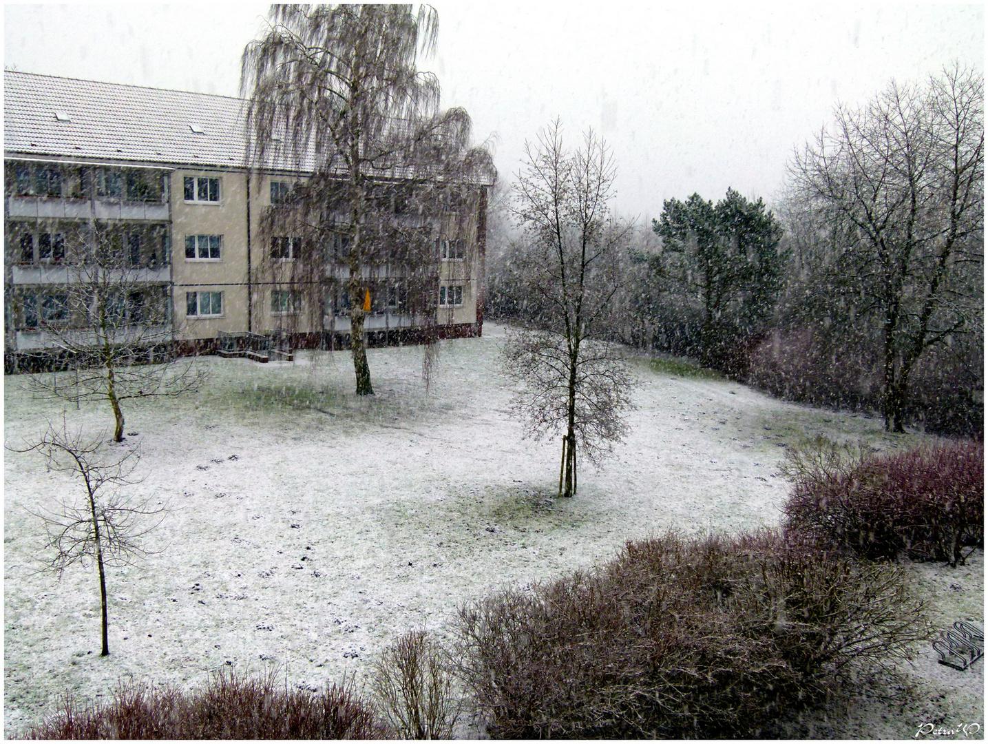 Erneuter Schneefall im Winter 2013