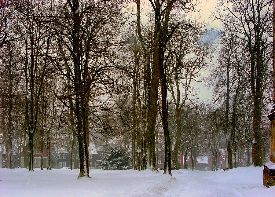 Erneuter Wintereinbruch ...