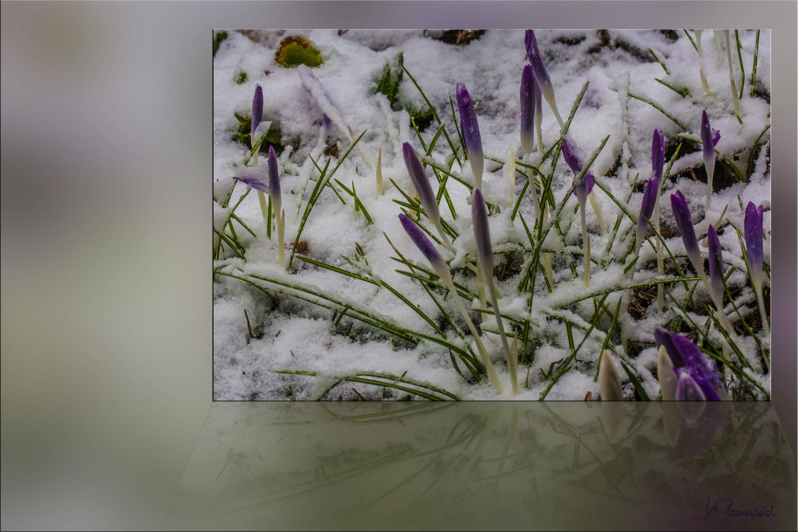 Erneuter Wintereinbruch in Mittelfranken