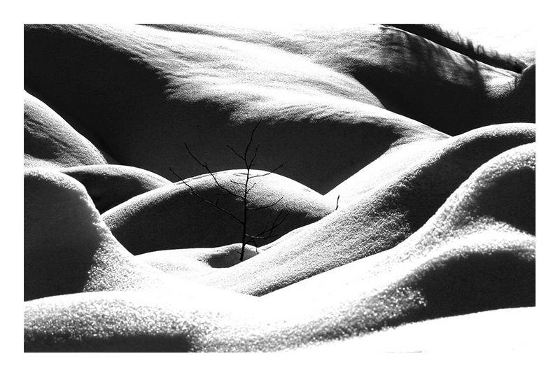 erotic nature
