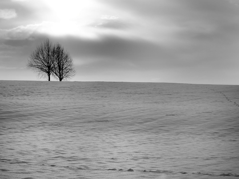 Erstarrung (frei nach Schuberts Winterreise)