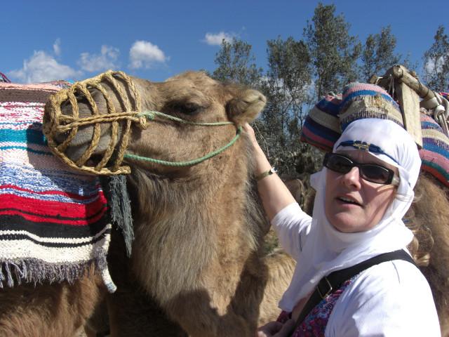 Erste Begegnung mit einem Kamel