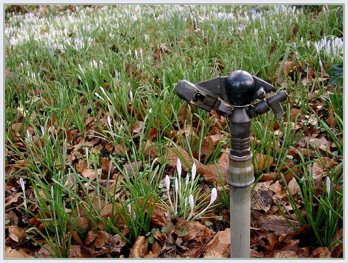 Erste Frühlingsanzeichen gesichtet :)