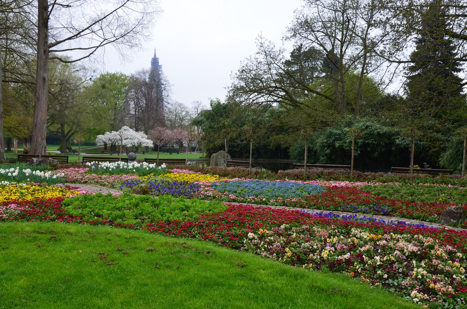 Erste Frühlingsstimmung im Park
