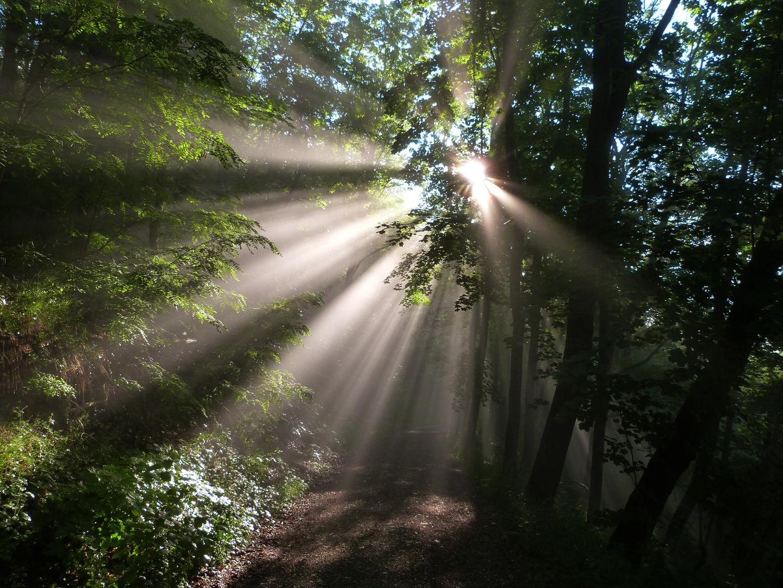 Erste Sonnenstrahlen am Morgen