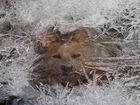 Erste Winterimpression ...