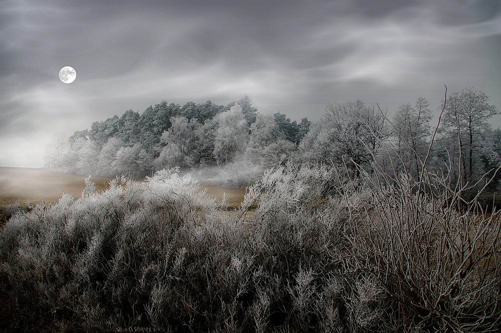 Erster Frost