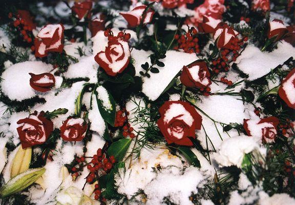 Erster Schnee auf dem Grab