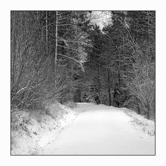 Erster Schnee in der fränkischen Schweiz