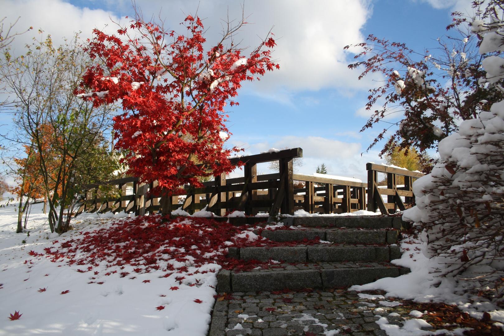 Erster Schnee in Schlema. Oktober 2012.