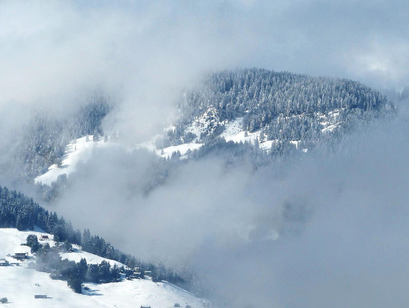 Erster Schnee - Überraschung hinter dem Nebelschleier
