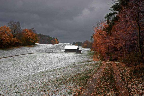 Erster Schnee und letztes Laub (Version 2 - mit Schärfenkorrektur)
