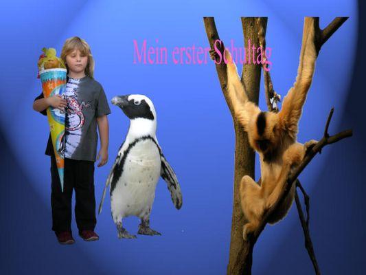 Erster Schultag mit Pingu