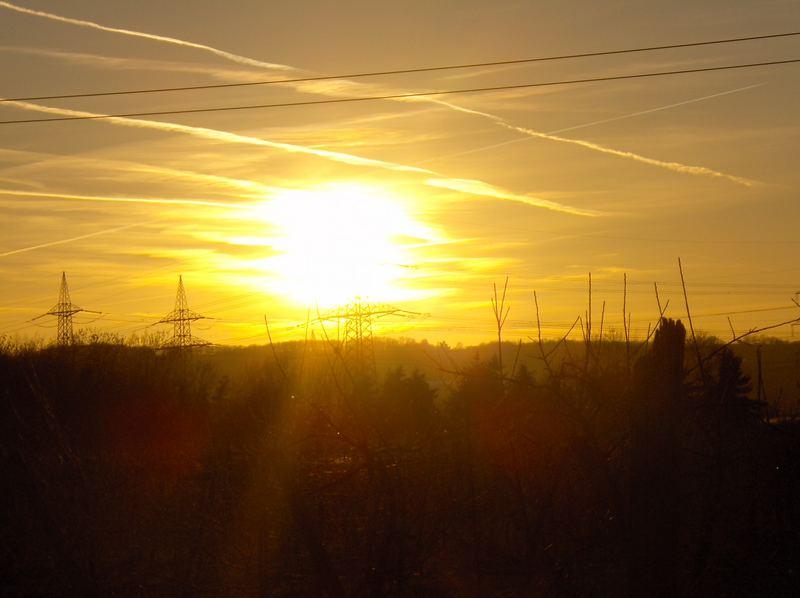 Erster Sonnenschein 2007
