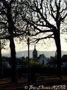 Erstes Morgenlicht auf die Pfalz beim Münster zuz Basel