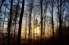 Erstes Sonnenlicht im Dezember