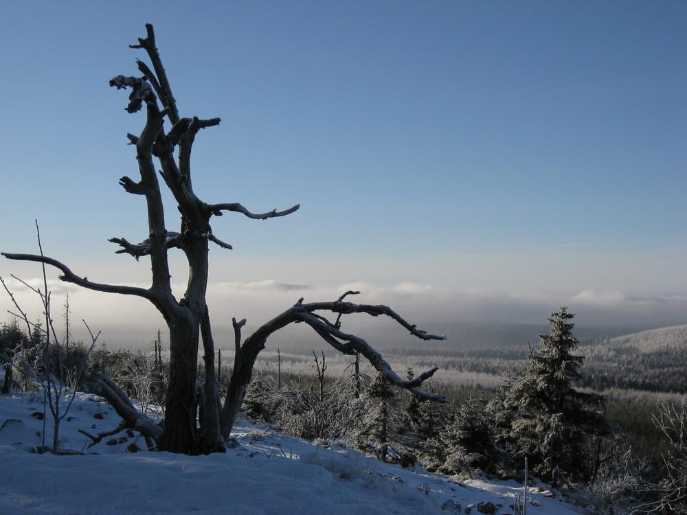 Erzgebirge...