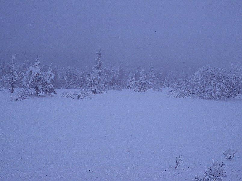 Erzgebirge im Winter 10