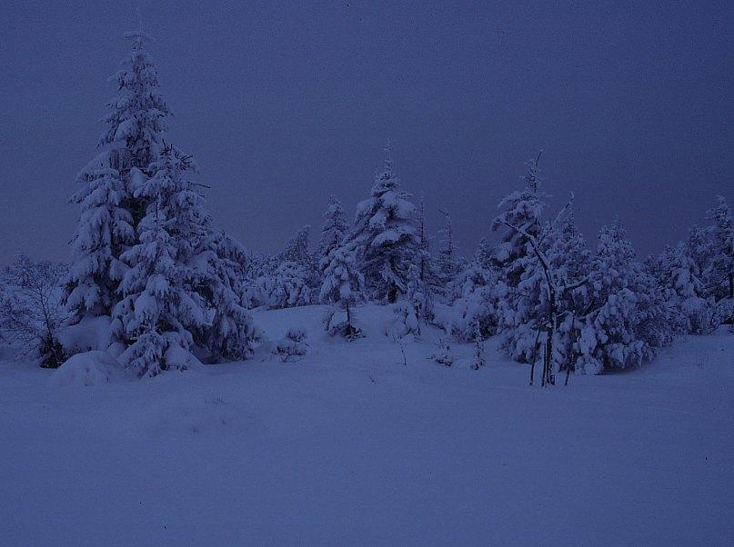 Erzgebirge im Winter 18