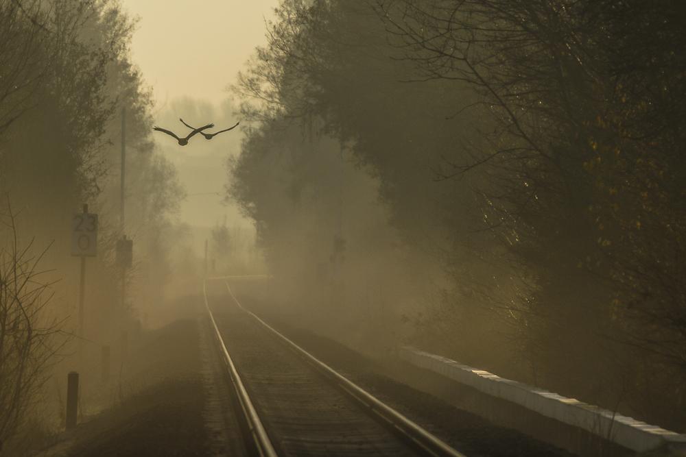 ... es fährt ein Zug nach ...