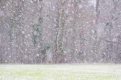 Es fängt an zu schnein # 9341