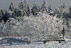 Es gibt doch Schnee zu Weihnachten