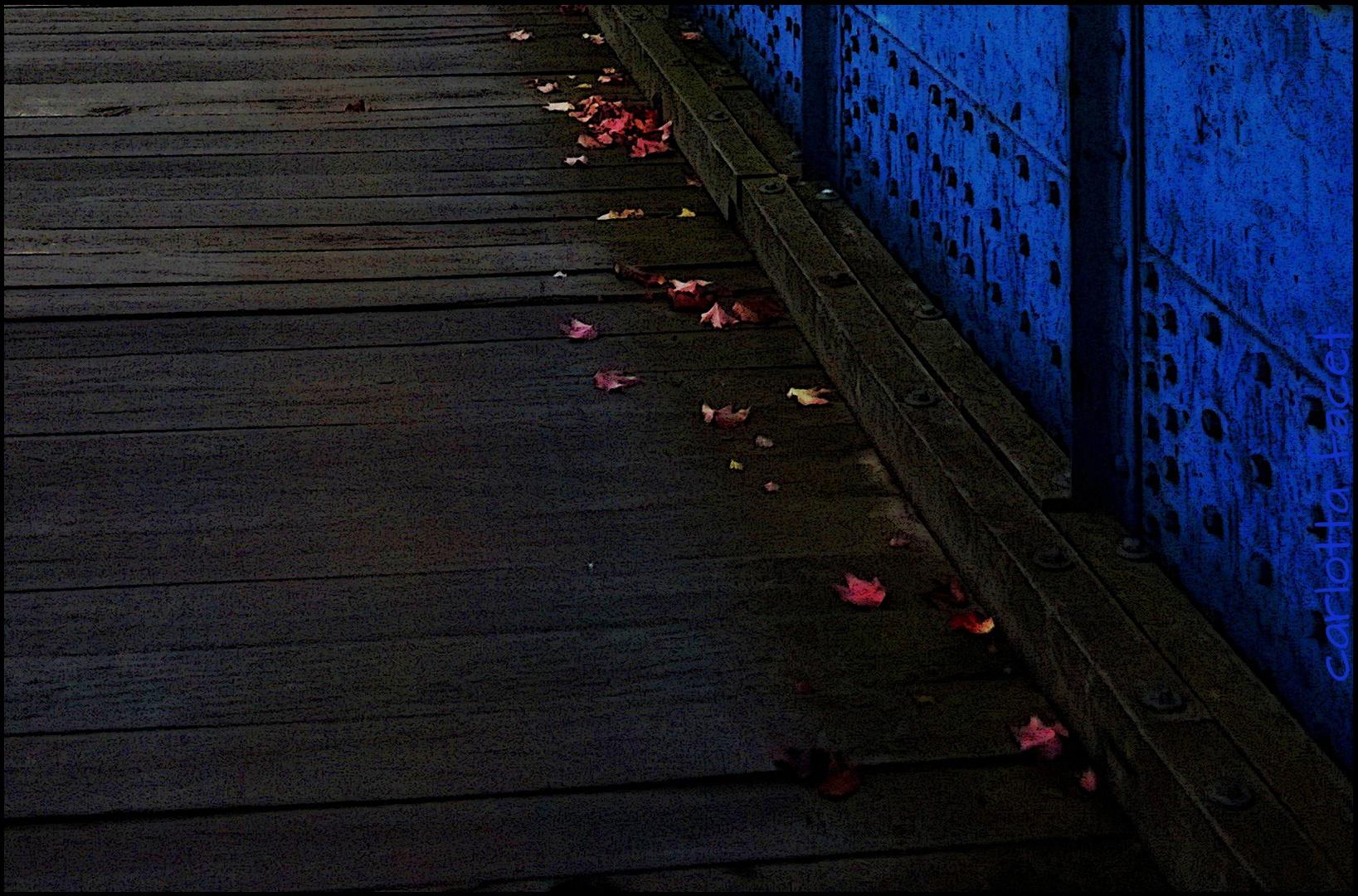 *Es gibt eine Stille des Herbstes bis in die Farben hinein.*