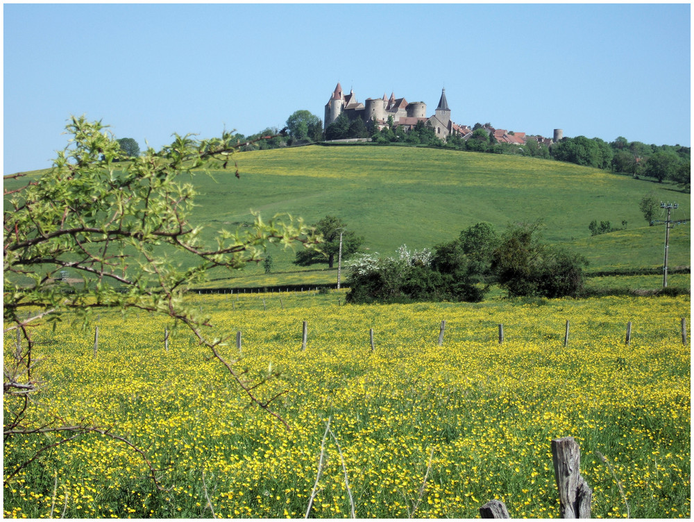 Es grünt so grün, wenn Burgund's Wiesen blühn...