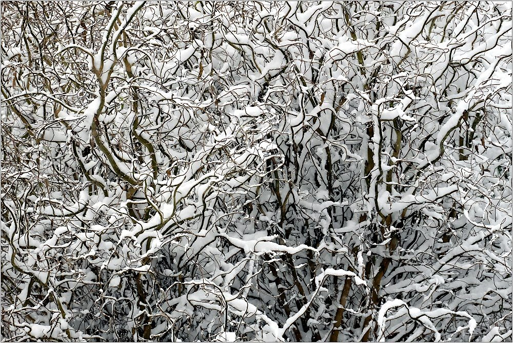 Es hat geschneit...