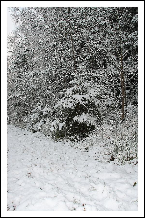 es hat geschneit