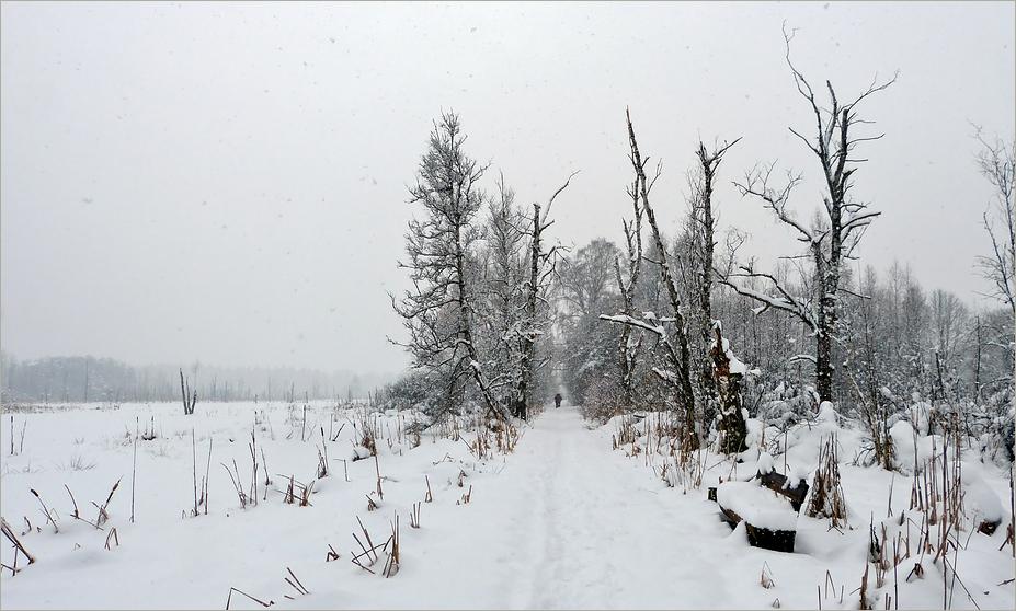 Es hat geschneit - kalt wars - schön wars