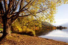 Es herbstelt am Zeller See