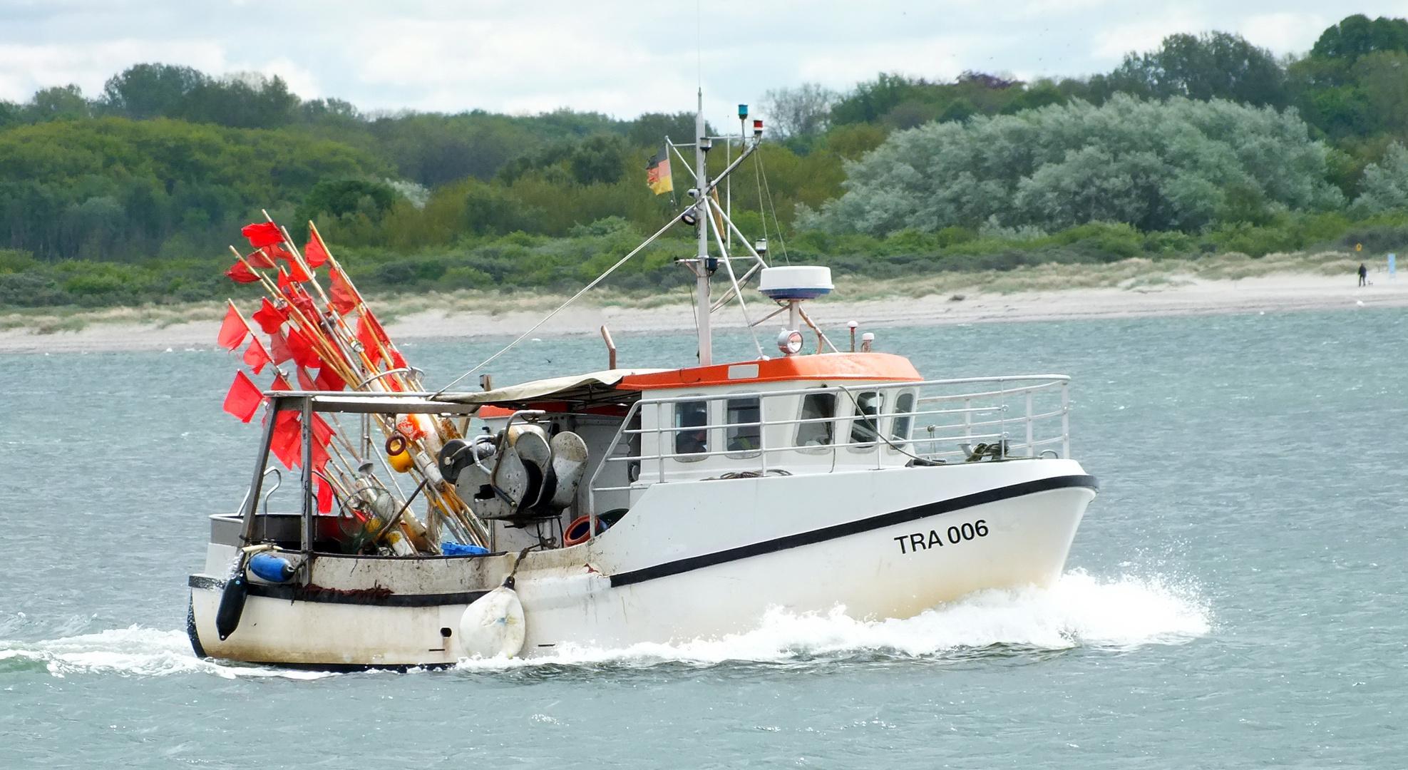 Es ist eine Freude,dass Travemünde auch noch Stellnetzfischer hat.
