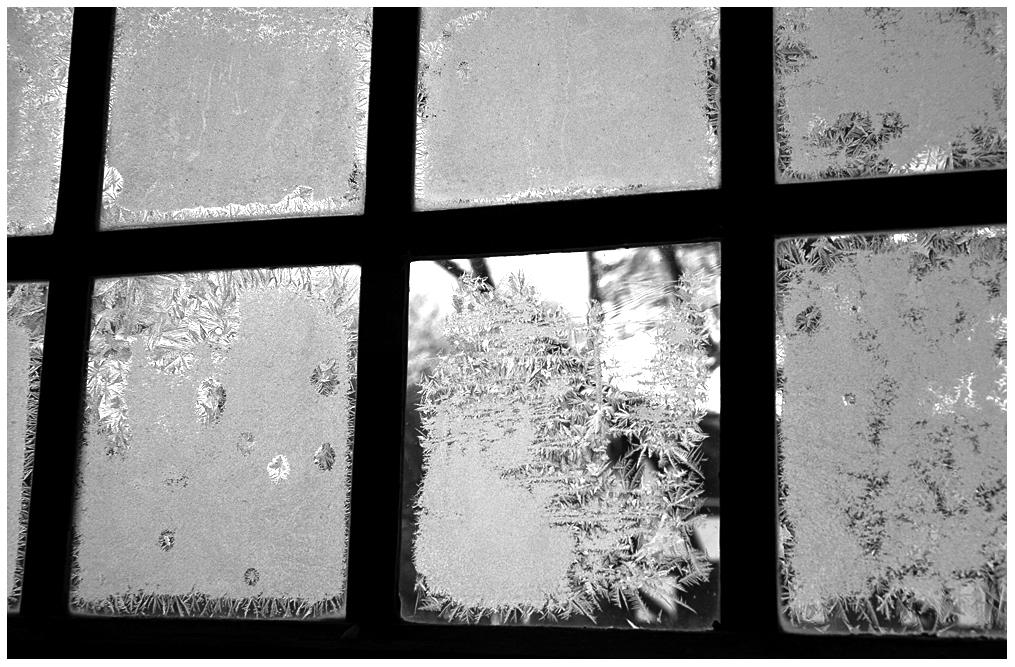 Es ist Eisblumen kalt im Kommern