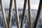 Es ist immer noch Winter .... # 2