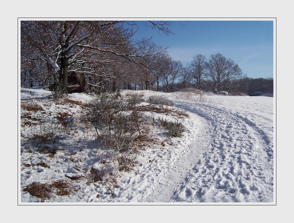 Es ist immer noch Winter_1