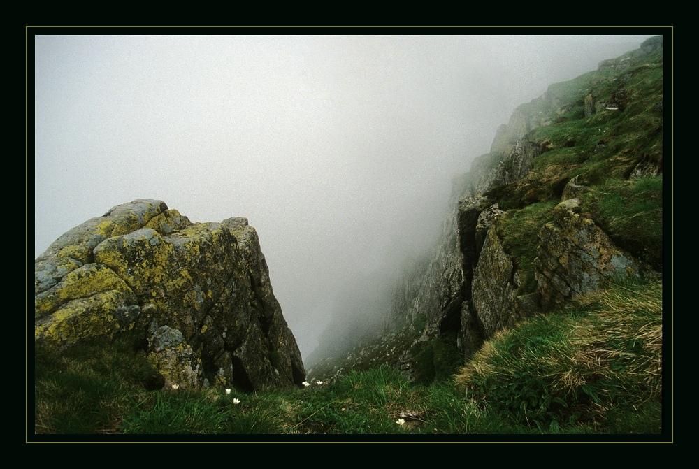 Es ist Nebel im Gebirge...