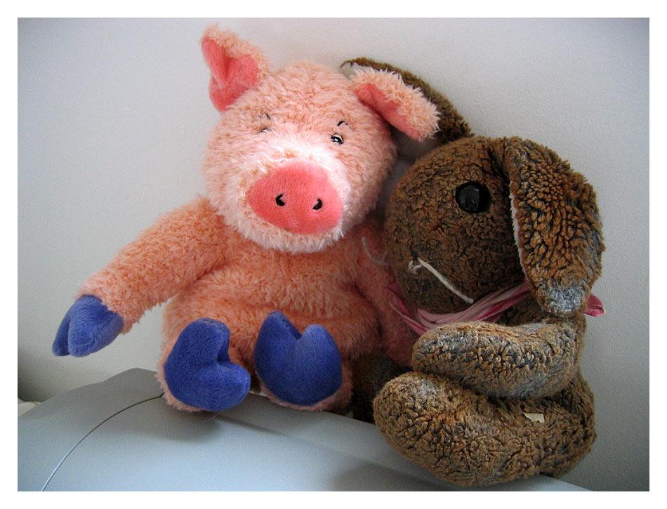 Es ist so soen, ein Swein tsu sein