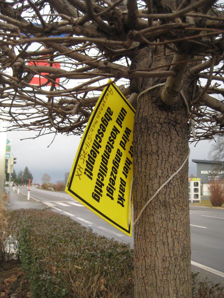 Es ist sowieso besser nicht im Baum zu parken