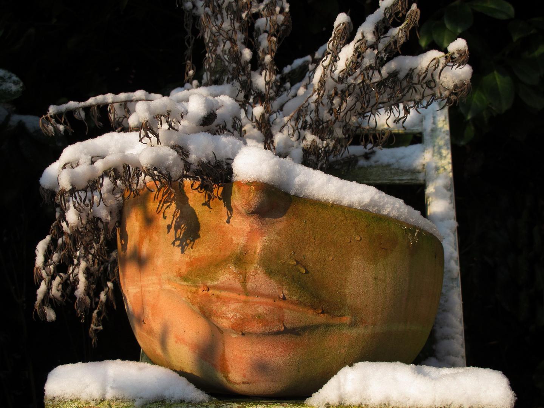 es ist zum Heulen mit dem Winter..........
