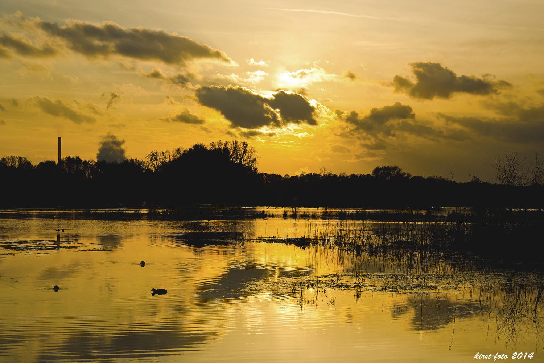 Es kehrt Ruhe ein am Brachwassersee