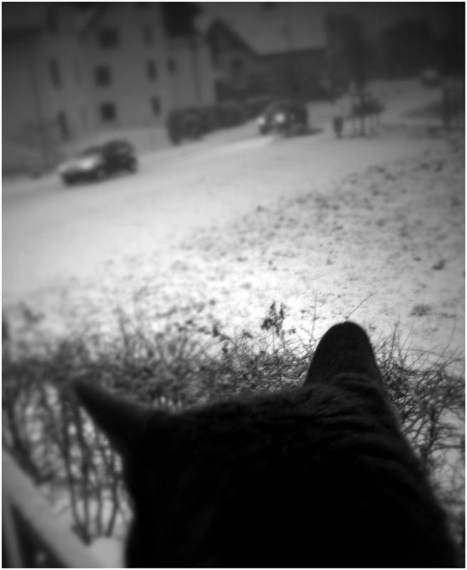 es liegt wieder schnee ... (I)